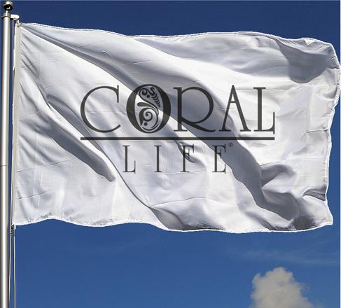 coralkurumsal